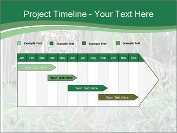 0000094187 PowerPoint Templates - Slide 25