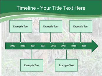 0000094187 PowerPoint Templates - Slide 28