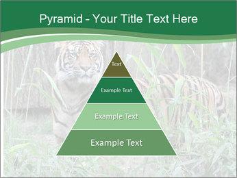 0000094187 PowerPoint Template - Slide 30