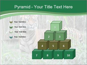 0000094187 PowerPoint Template - Slide 31