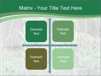 0000094187 PowerPoint Template - Slide 37