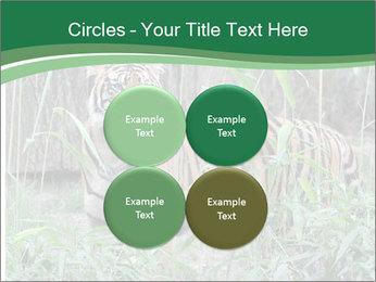 0000094187 PowerPoint Templates - Slide 38