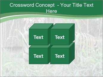 0000094187 PowerPoint Template - Slide 39