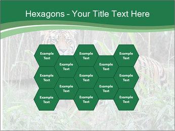 0000094187 PowerPoint Template - Slide 44