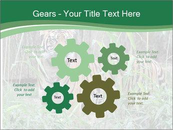 0000094187 PowerPoint Templates - Slide 47