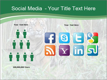 0000094187 PowerPoint Template - Slide 5