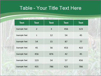 0000094187 PowerPoint Templates - Slide 55