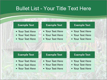 0000094187 PowerPoint Template - Slide 56