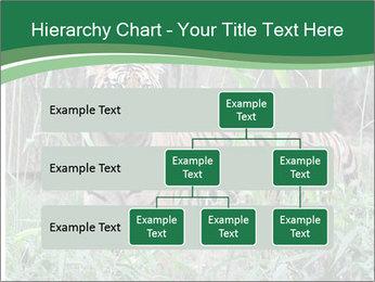 0000094187 PowerPoint Template - Slide 67