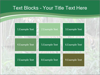 0000094187 PowerPoint Template - Slide 68