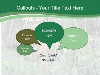 0000094187 PowerPoint Template - Slide 73