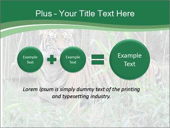 0000094187 PowerPoint Templates - Slide 75