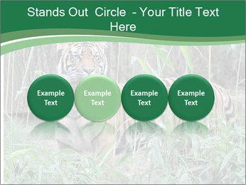 0000094187 PowerPoint Templates - Slide 76