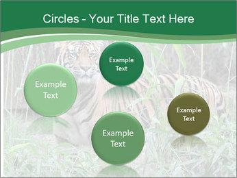 0000094187 PowerPoint Template - Slide 77