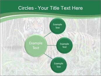 0000094187 PowerPoint Templates - Slide 79