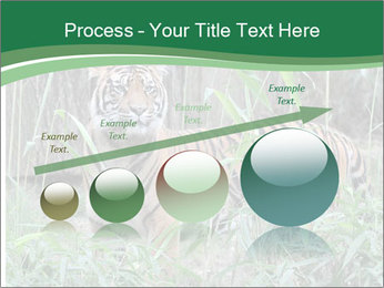 0000094187 PowerPoint Templates - Slide 87