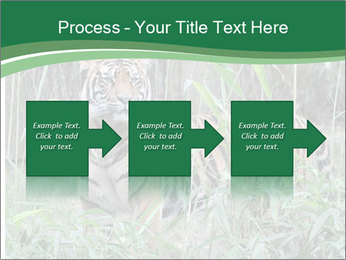 0000094187 PowerPoint Templates - Slide 88