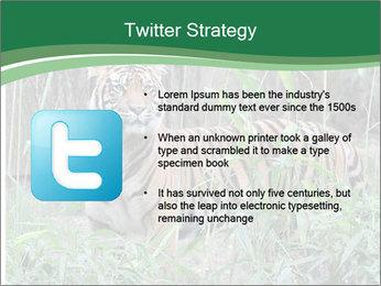 0000094187 PowerPoint Template - Slide 9