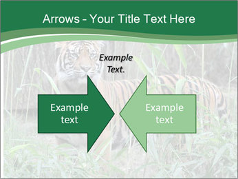 0000094187 PowerPoint Template - Slide 90