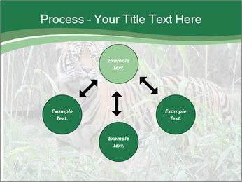 0000094187 PowerPoint Template - Slide 91