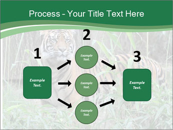 0000094187 PowerPoint Templates - Slide 92