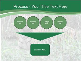 0000094187 PowerPoint Template - Slide 93