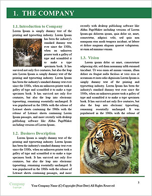 0000094187 Word Template - Page 3