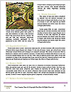 0000094190 Word Templates - Page 4