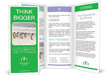 0000094193 Brochure Template