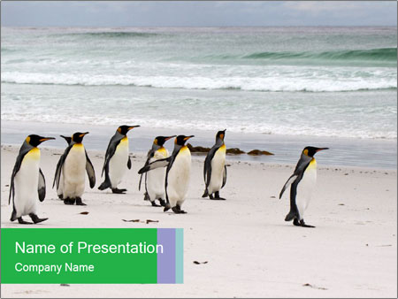 0000094193 PowerPoint Template