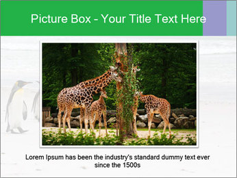 0000094193 PowerPoint Template - Slide 15