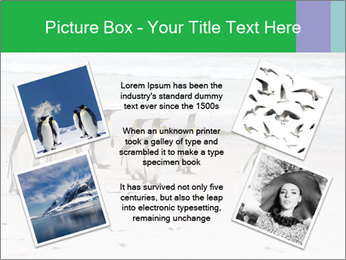 0000094193 PowerPoint Template - Slide 24