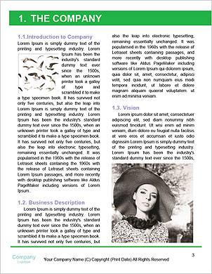 0000094193 Word Template - Page 3