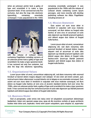 0000094193 Word Template - Page 4