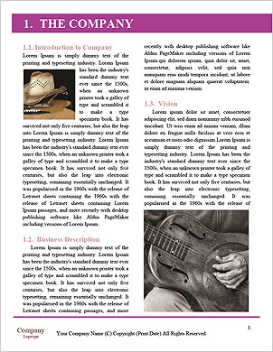 0000094196 Word Template - Page 3