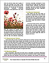 0000094197 Word Templates - Page 4