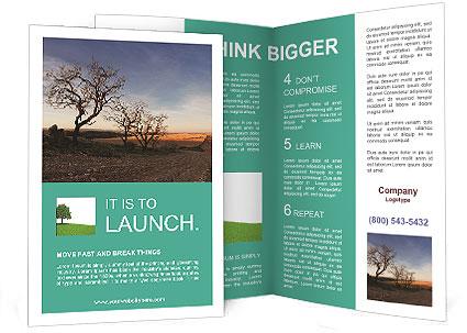 0000094202 Brochure Templates