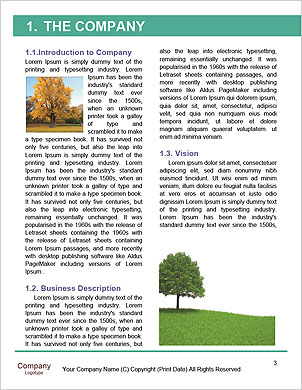 0000094202 Word Template - Page 3