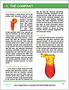 0000094205 Word Template - Page 3