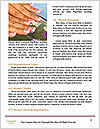 0000094217 Word Templates - Page 4