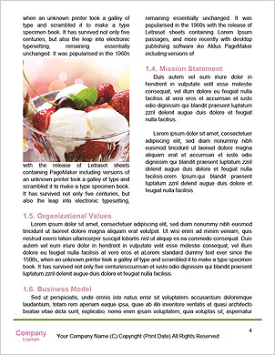 0000094219 Word Template - Page 4