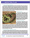 0000094220 Word Template - Page 8