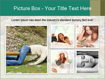 0000094224 PowerPoint Template - Slide 19