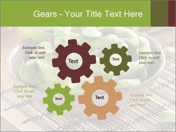 0000094226 PowerPoint Template - Slide 47