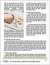 0000094226 Word Templates - Page 4