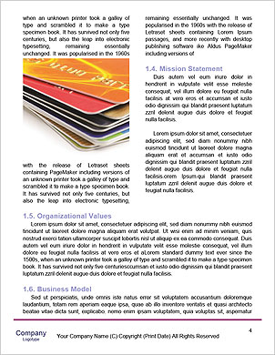 0000094227 Word Template - Page 4