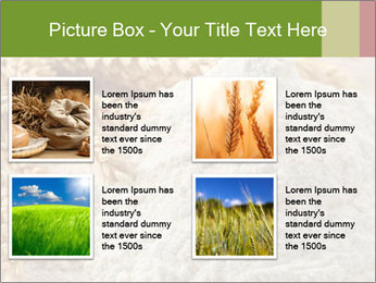 0000094229 PowerPoint Templates - Slide 14