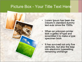 0000094229 PowerPoint Templates - Slide 17
