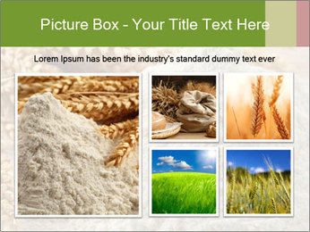 0000094229 PowerPoint Templates - Slide 19