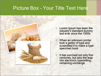 0000094229 PowerPoint Templates - Slide 20